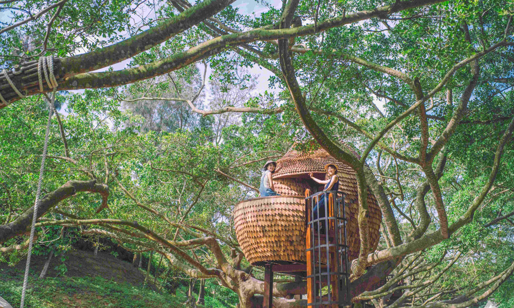 treehouse003