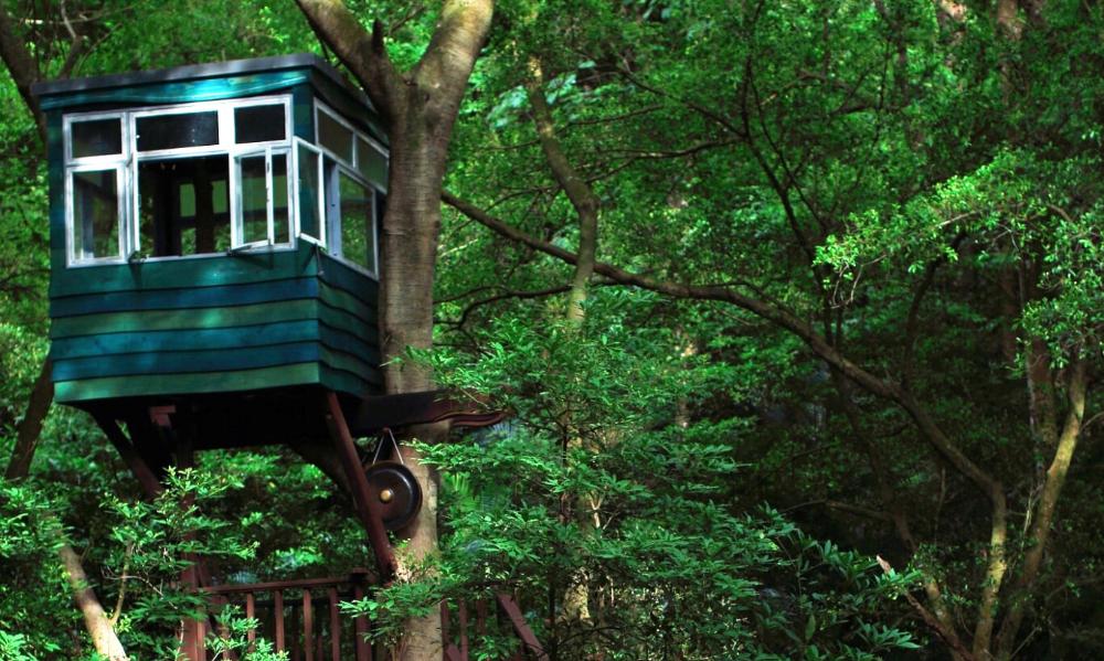 森大小林樹屋
