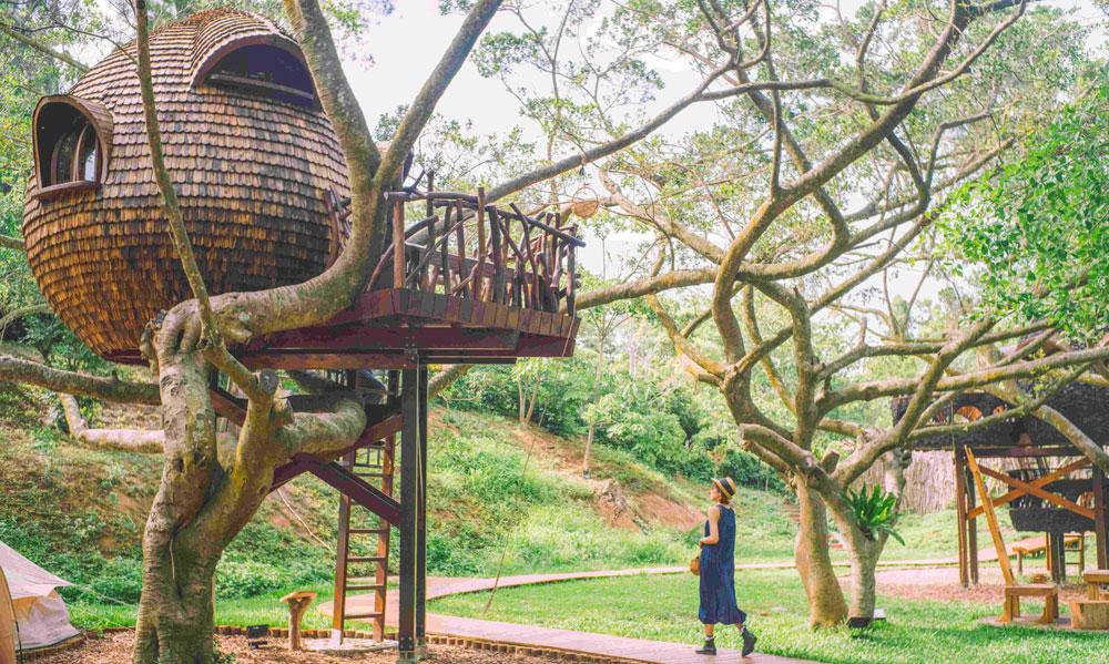 treehouse001