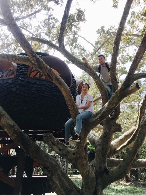 爬樹的爸媽