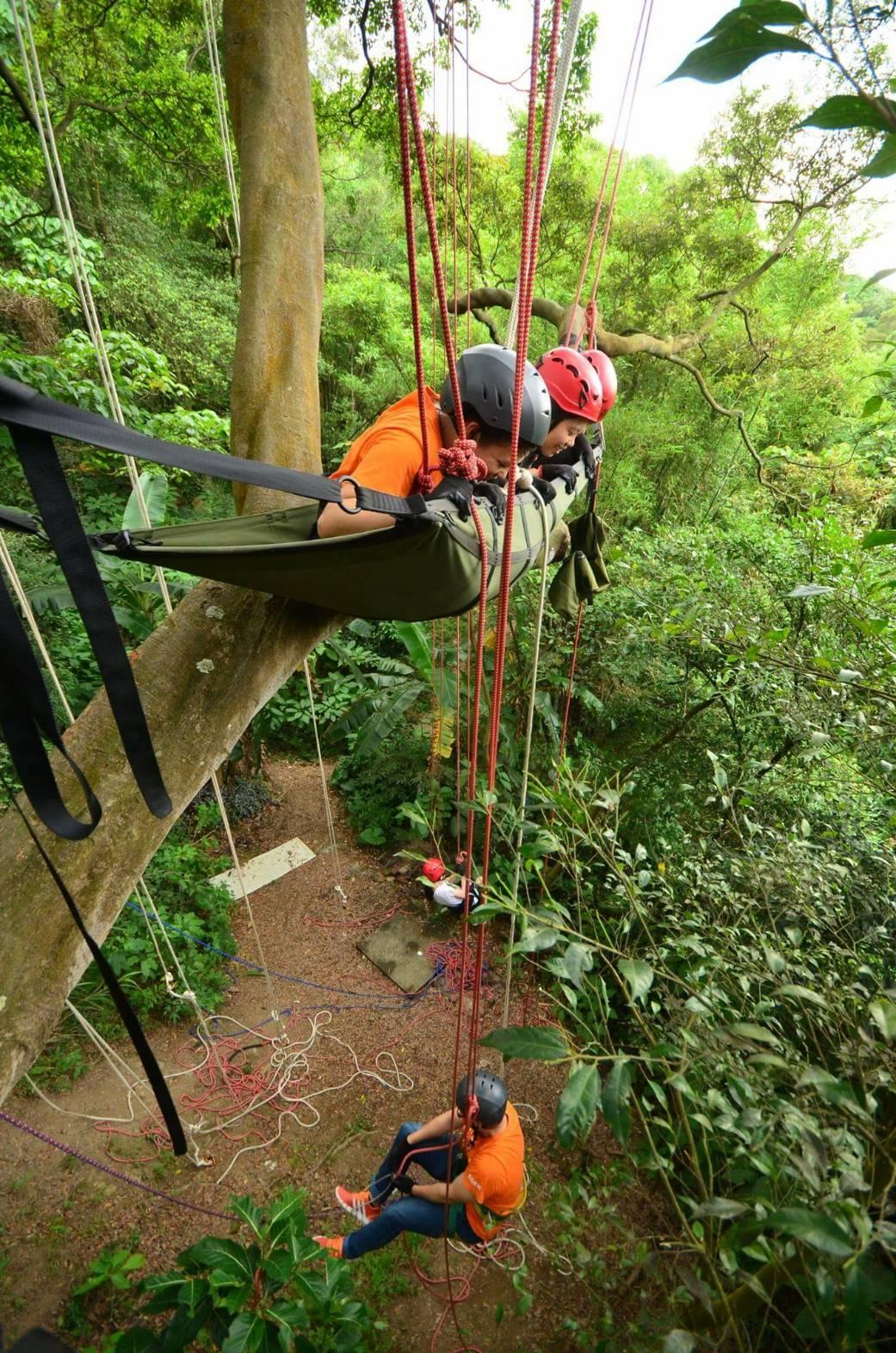 激勵自己的攀樹之旅