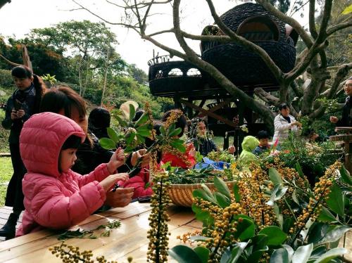 森林學 生活採集概論